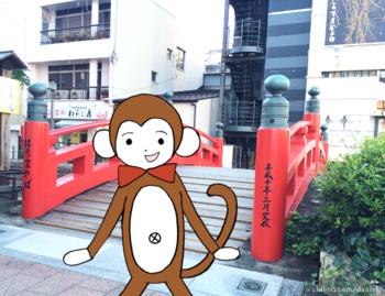 日本最大がっかり名所の1つ高知のはりまや橋とさるのダニエル
