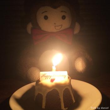 さるのダニエルがバースデーケーキを食べている写真