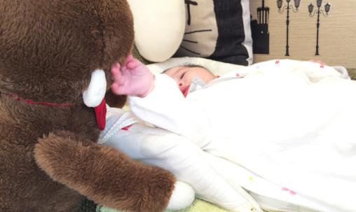 赤ちゃんのおもりをするさるのダニエル