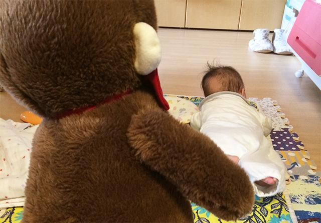 さるのダニエルを見て逃げる赤ちゃん