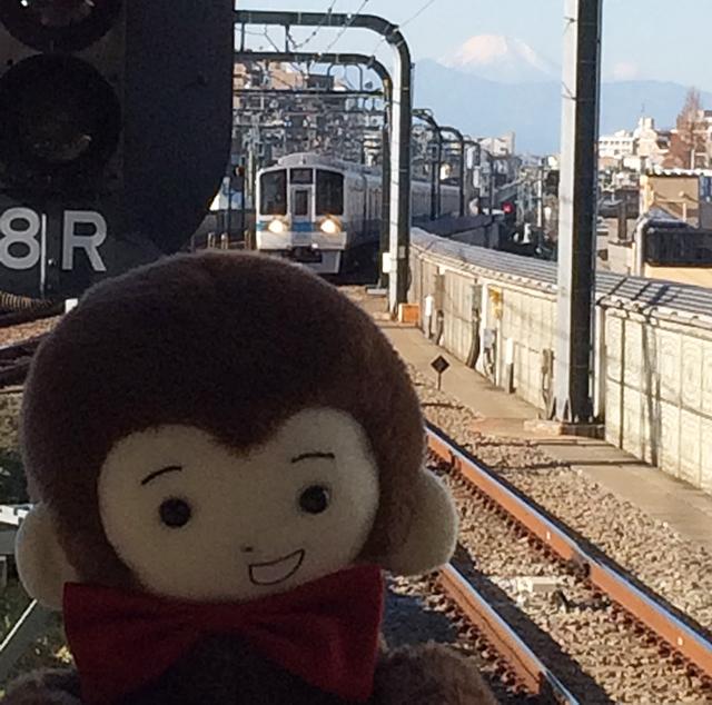 さるのダニエルと富士山のツーショット