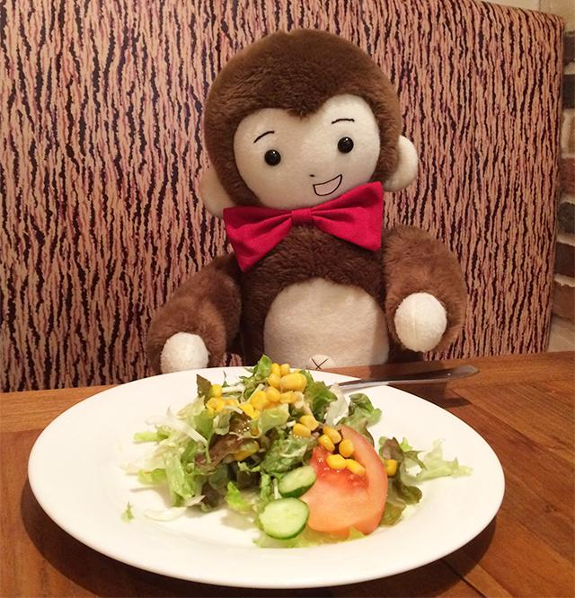 日枝神社に初詣に行く前に、パンコントマテでサラダをいただくさるのダニエル