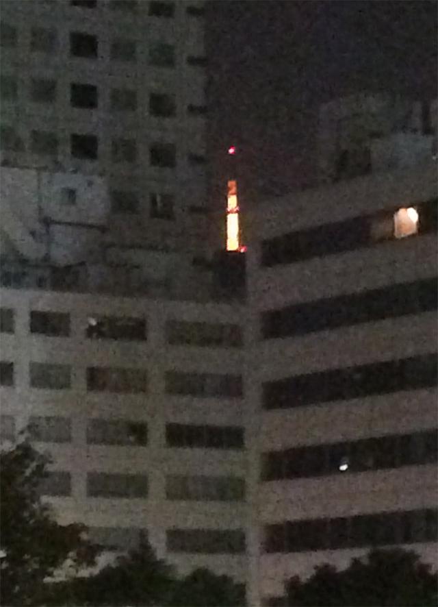 日枝神社に初詣に行くさるのダニエル 東京タワー